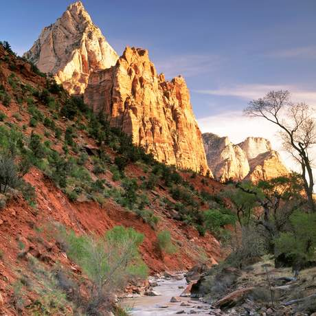 Der Virgin River morgens im Zion National Park, Hurricane