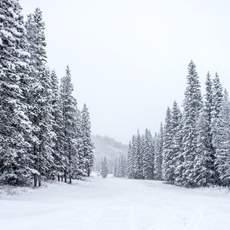 Der erste Schnee im Mount Norquay Skiegebiet in Banff