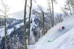 Tree-Skiing in Aspen/Snowmass