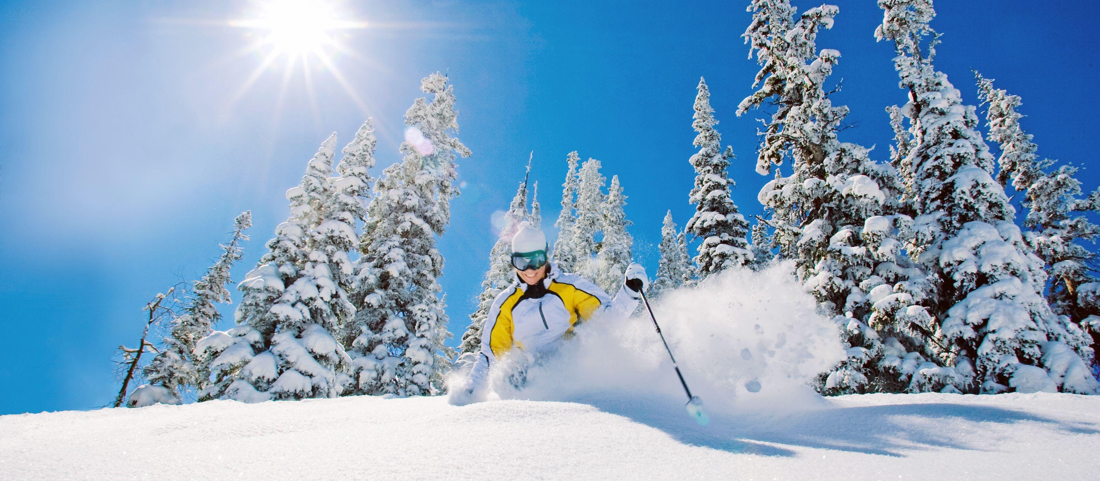 Skifahrer im unberuehrten Powder