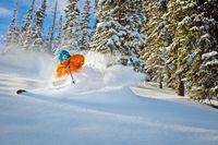 Aspen/Snowmass-Limelight Hotel