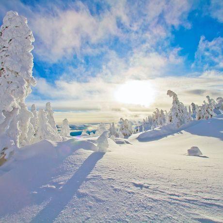Unebruehrte Landschaft mit Snowghosts