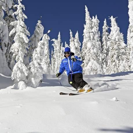 Abfahrt zwischen Baeumen im Neuschnee