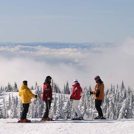 Misty Group in Silver Star