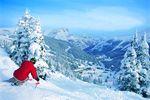 Skireisen Alberta