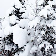 Schneemassen im Banff National Park