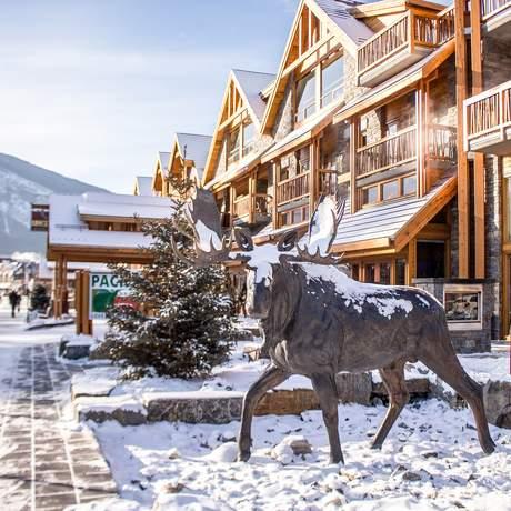 Elch Statue vor dem Moose Hotel in Banff