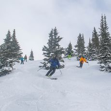 Ski fahren im Sunshine Village