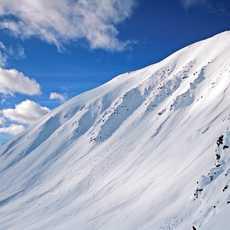 Skispuren am Hang