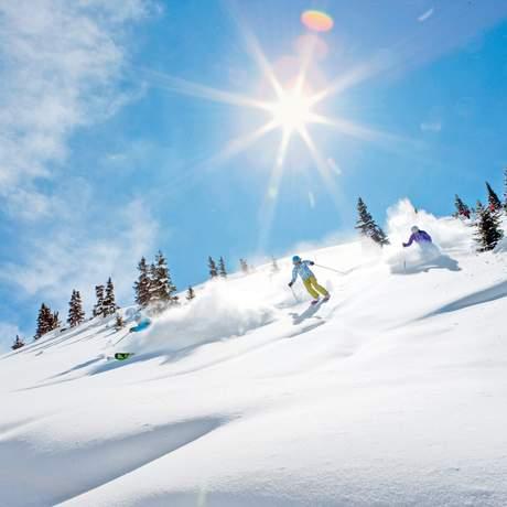 Ski fahren an einem Bluebird Powder Day