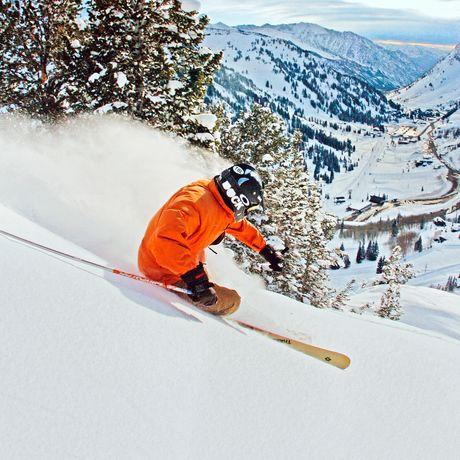 Skifahrer in frischem Powder
