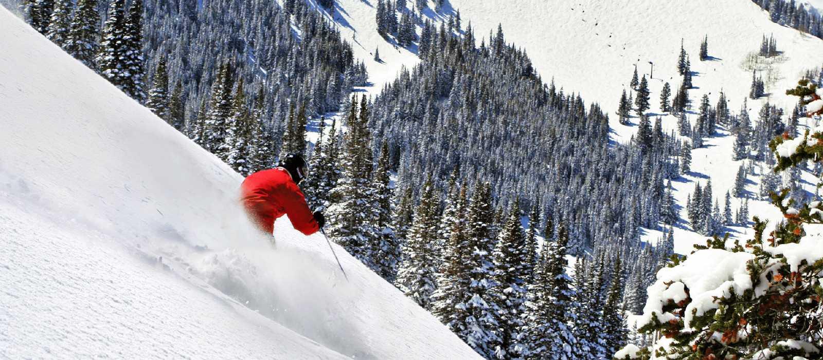 Skifahrer vor Bergkulisse