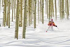 Erleben Sie mit CANUSA ein faszinierendes Tree Skiing Erlebnis.