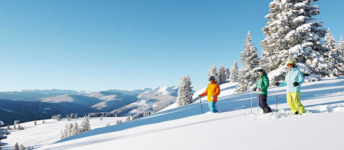 Ski und Landschaft