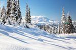Neuschnee auf der Powder Piste in Whistler in British Columbia