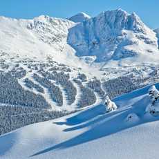 Feinster Schnee in Whistler Blackcomb