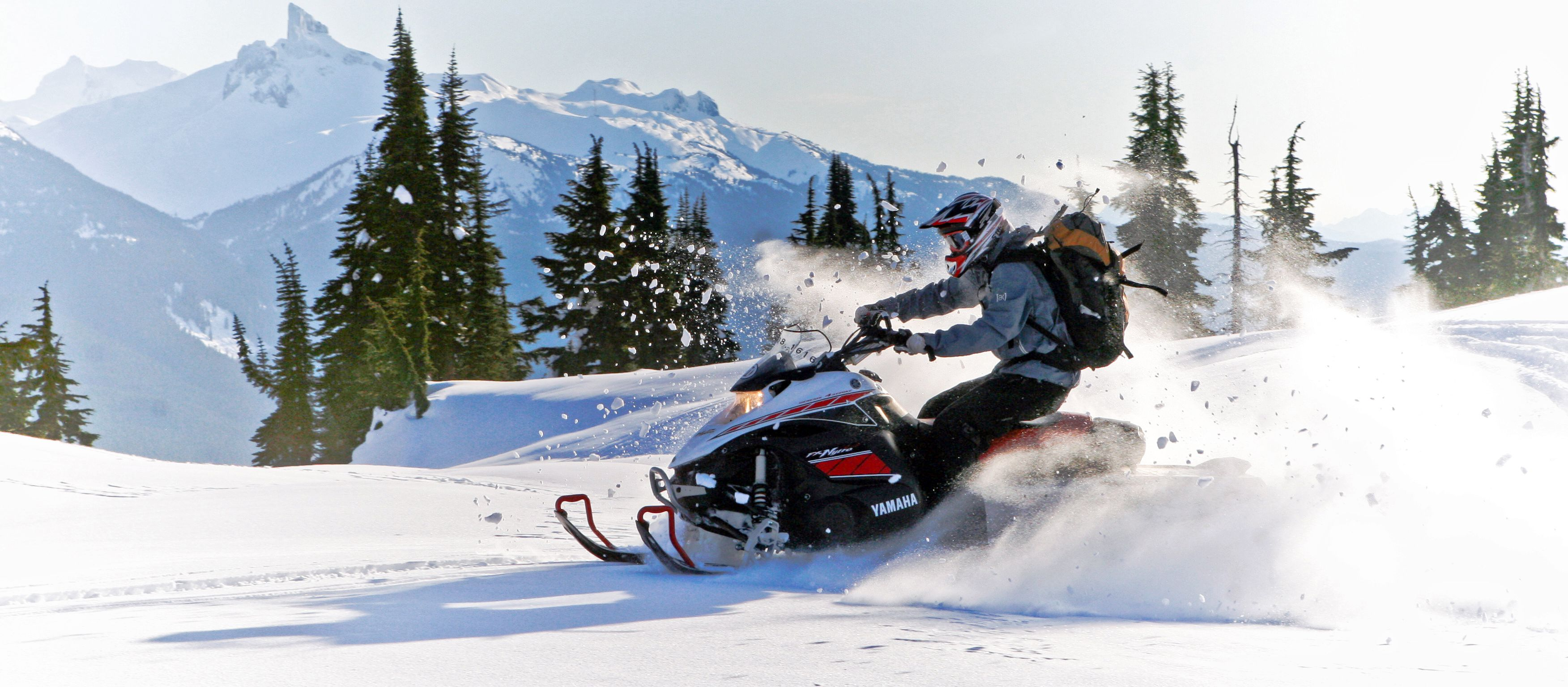 Snowmobile-Action